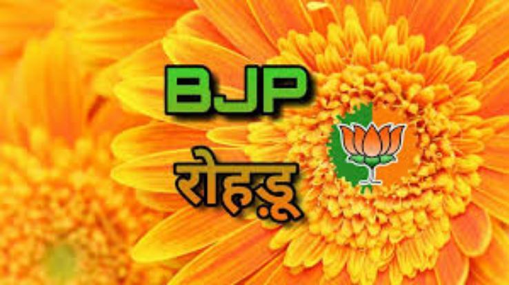 रोहड़ू भाजपा ने किया आईटी कार्यकारिणी का गठन