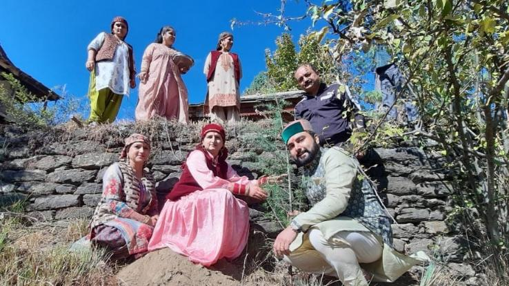chikhad-girl-plants-tree-in-rohru