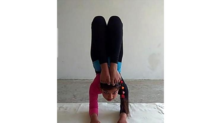 Shimla: 31 players reached the final round of Yogasan Sports Competition