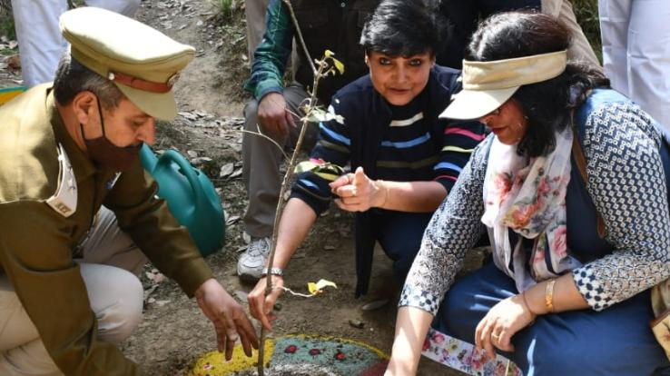 Forest Department cleaned the forests