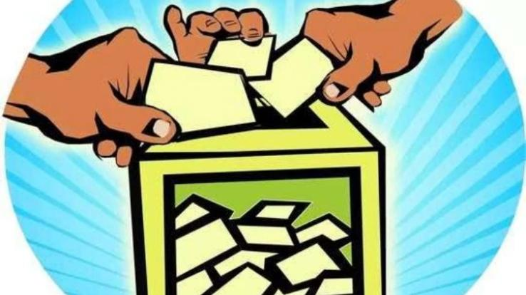 total 73 nominations were submitted for Municipal Corporation Solan
