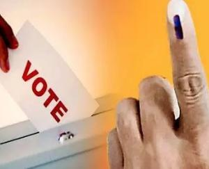 Zilla Parishad election results, know who won