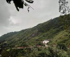 darlaghat-news-update-solan-may-2021-22