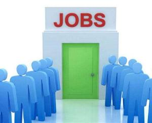 Youth employment program for youth will be organized by District Employment Office, Solan