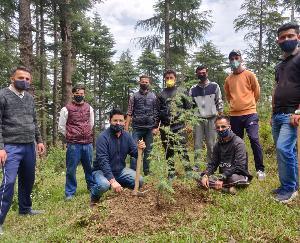 शिलाई: पर्यावरण दिवस के उपलक्ष्य में युवा कांग्रेस शिलाई ने रोपे पौधे, नरेंद्र बरागटा  के निधन पर रखा 2 मिनट का मौन