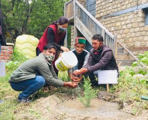 The people of Ribba and Rarang Panchayat of Kinnaur gave a message to save the environment by planting