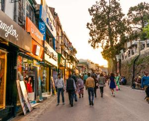 Tourism business is back on track in Himachal Pradesh june 11 2021