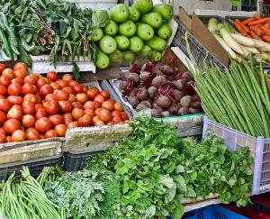 Now packing of fruits and vegetables will be done with new technology in Himachal june 13 2021