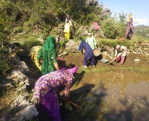 दाड़लाघाट :बनिया देवी महिला मंडल ने चलाया सफाई अभियान