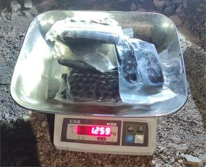 Mumbai youth arrested with 1 kg 259 grams of charas in Kullu JUNE 18 2021