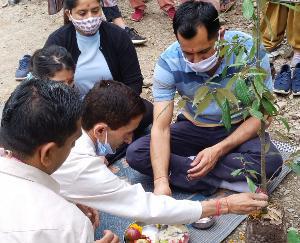 शिमला : वन महोत्सव में लक्कड़ बाजार-क्यार कोटी मार्ग पर लगाए गए 300 देवदार व बान