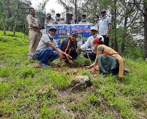 जोगिन्दर नगर : छापरोट में एसडीएम मेजर विशाल शर्मा ने रोटरी क्लब जोगिंदर नगर के साथ किया पौधरोपण