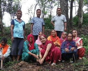 देहरा : चौली प्रधान ज्योति देवी संघ नारी शक्ति ने51औषधीय पौधा रोपण कर मनाया वनमहोत्सव