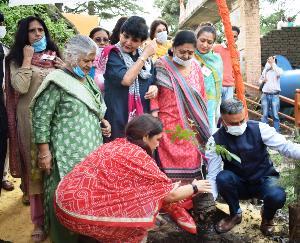 शिमला : राज्य रेडक्रॉस सोसायटी ने किया प्रदेश स्तरीय वन महोत्सव का शुभारंभ