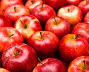Shimla: Due to the fall in apple prices, the opposition targeted the government, raised this demand