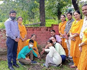 Mandi: Plantation program organized in DAV School