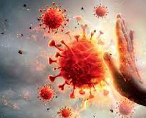Delhi: Corona virus will be easy to deal with, virus will slow down in 6 months