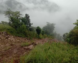 जोगिंदर नगर : बनेहड़ में भूस्खलन से मक्की की फसल तबाह