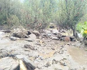 Due to heavy rains again in the state, there was a lot of damage, life became disturbed