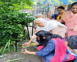 Elders in Solan called for nature conservation by planting saplings