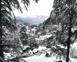 First snowfall in Pangi area, movement will not be possible for six months