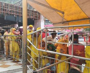 Kangra: 26 lakhs offered on the fifth Navratra in Shaktipeeth volcano