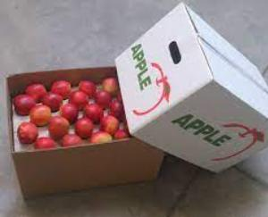 Apple carton more expensive due to increase in GST, another setback for gardeners