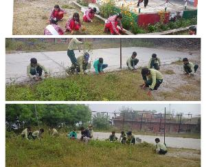 Under the cleanliness campaign, the playground of the school was cleaned