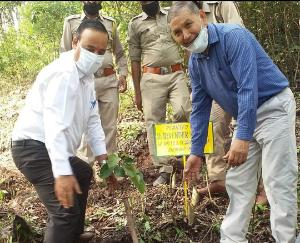 plantation-programme-organized-in-sirmaur