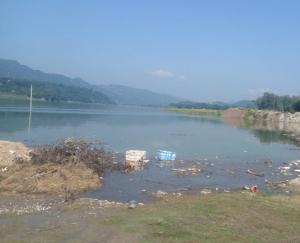 govind-sagar-lake-polluted