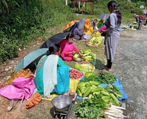 Women-power-is-giving-strength-to-its-economy-by-selling-roadside-vegetables