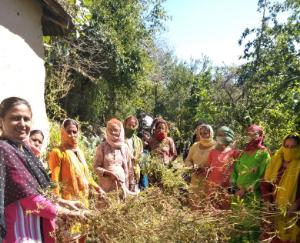 cleanliness-campaign-organized-in-dawti