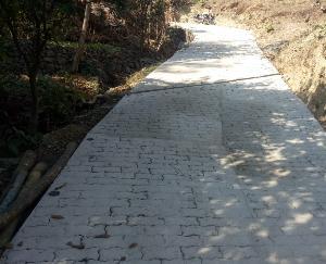करीब 15 परिवारों को मिलेगा सीधा लाभ 3 लाख से बनी सड़क