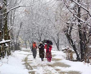 rainfall-in-himachal