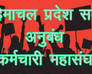 State Sarva Contract Employees Federation demands from the government