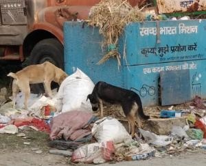 Cleanliness campaign fails in Bhati Bohan Panchayat publicly