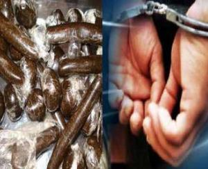 Kullu police arrested two Haryana youths with a kilo of 464 grams of charas