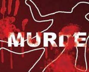 Brother brutally murdered sister, injured mother IGMC Shimla Refer