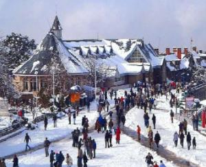 Increased Corona Cases in Himachal Pradesh Impact on Tourism Business