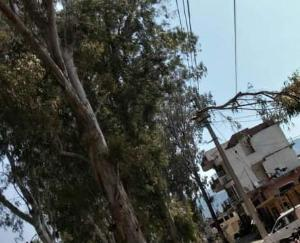 Gone are the trees that are inviting accidents in Kunihar